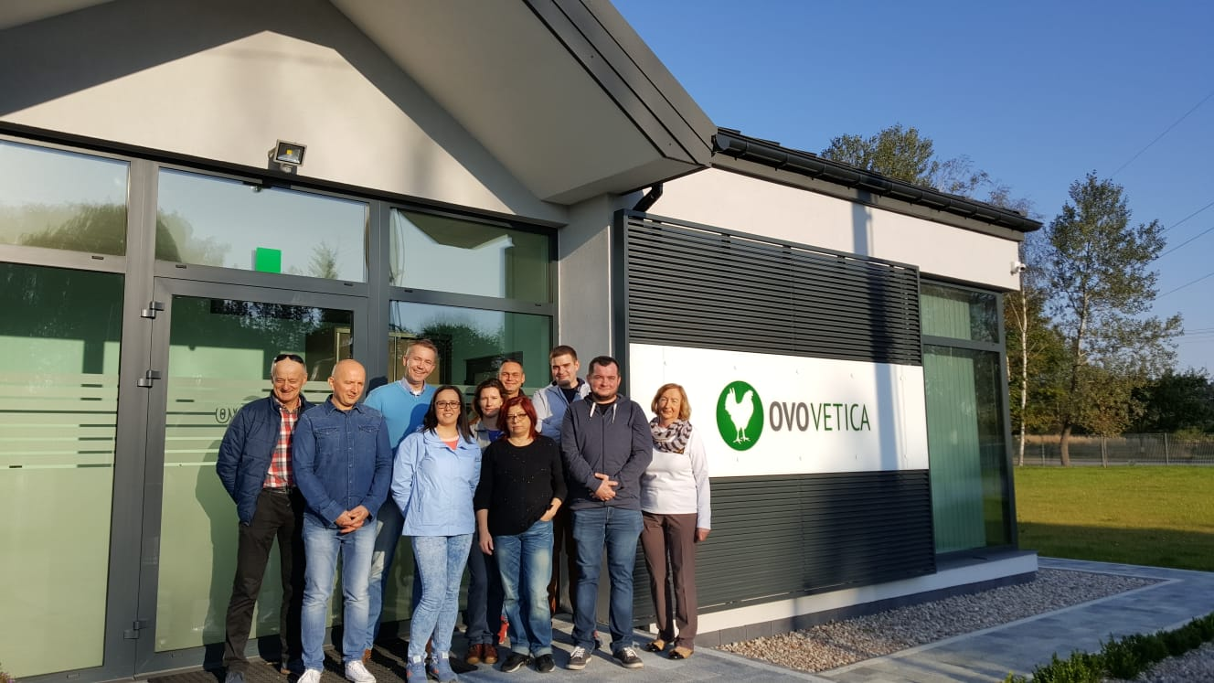 Zespół OVO Vetica